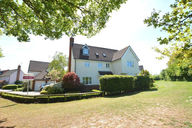 Thumbnail Detached house for sale in Mary Ruck Way, Braintree