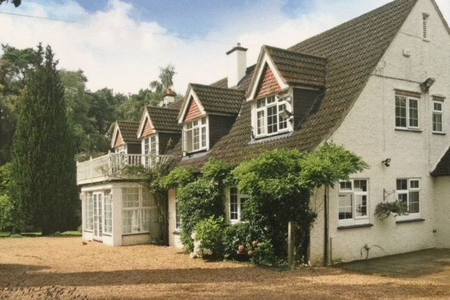 Thumbnail Detached house for sale in Whitmore Vale Road, Hindhead
