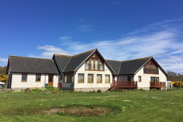 Thumbnail Detached house for sale in Lybster Mains, Lybster