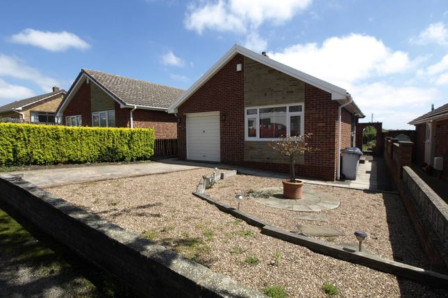Thumbnail Detached bungalow to rent in St. Catherines Way, Barnsley