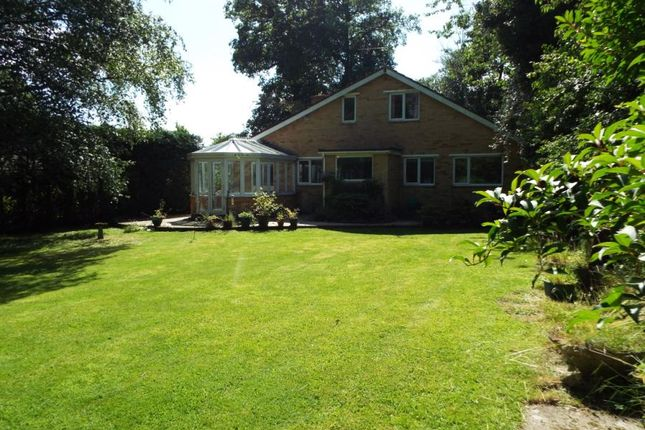 Thumbnail Detached house for sale in Horns Drove, Rownhams, Southampton, Hampshire