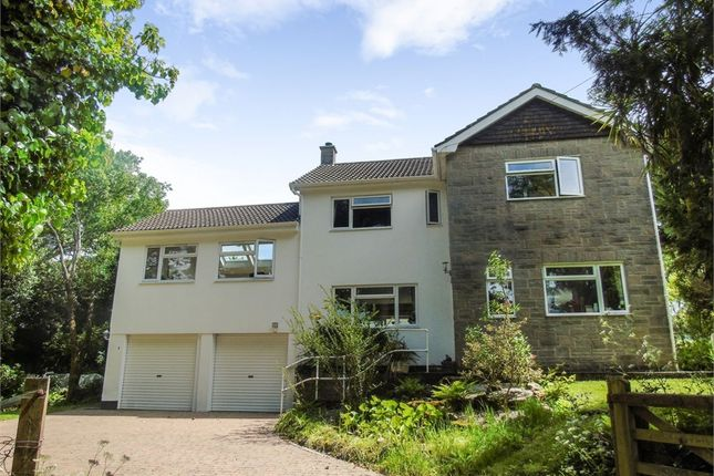 Thumbnail Detached house for sale in Trew, Breage, Helston, Cornwall