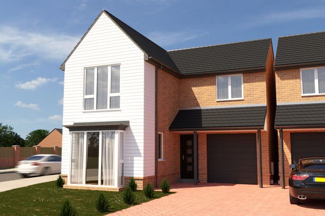 Thumbnail Semi-detached house for sale in Forest Avenue (Plot 108), Hartlepool