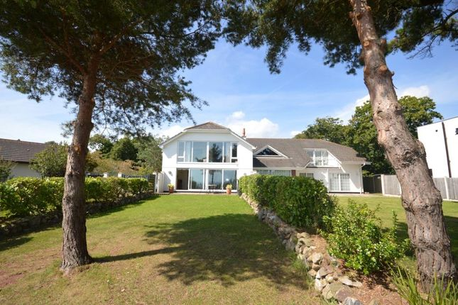 Thumbnail Detached house for sale in Old Teignmouth Road, Dawlish, Devon