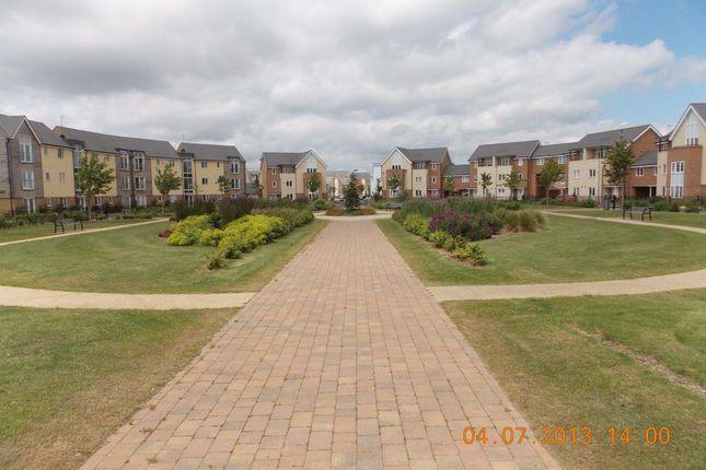 Thumbnail Property to rent in Wenford, Broughton, Milton Keynes