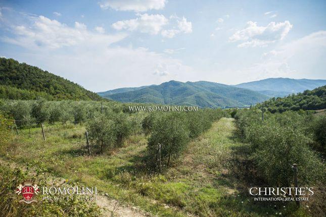 Thumbnail Farm for sale in Città di Castello, Umbria, Italy