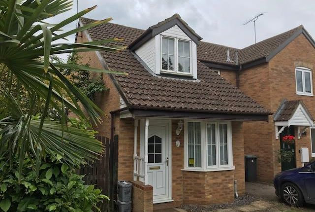 Thumbnail Property to rent in Hawthorn Drive, Towcester