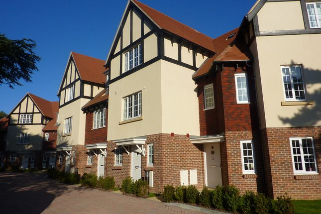 Thumbnail Property to rent in Sussex Mews, Worthing