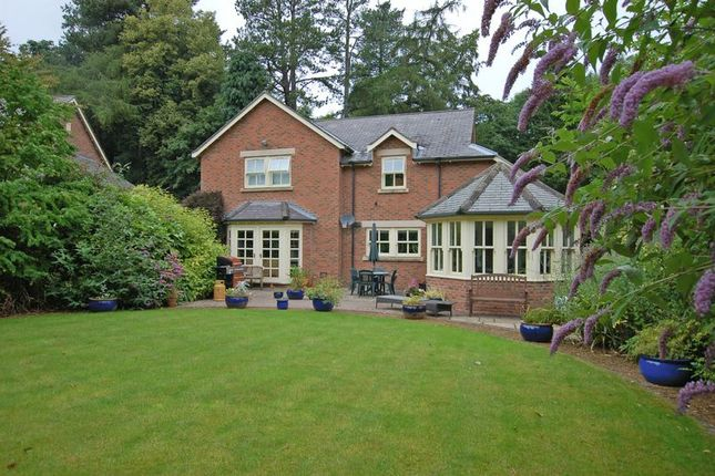 Thumbnail Detached house for sale in Whalton Park, Gallowhill, Morpeth