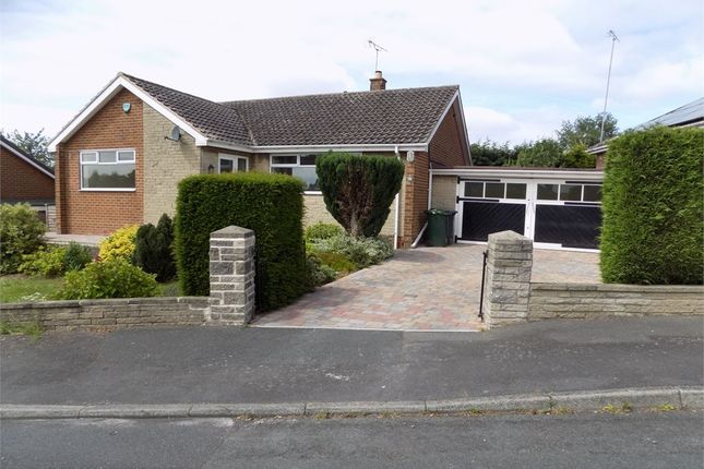 Thumbnail Detached bungalow to rent in Rayls Road, Todwick, Sheffield, South Yorkshire