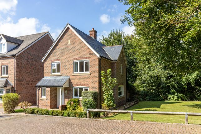 Thumbnail Detached house to rent in Thornton Close, Alresford