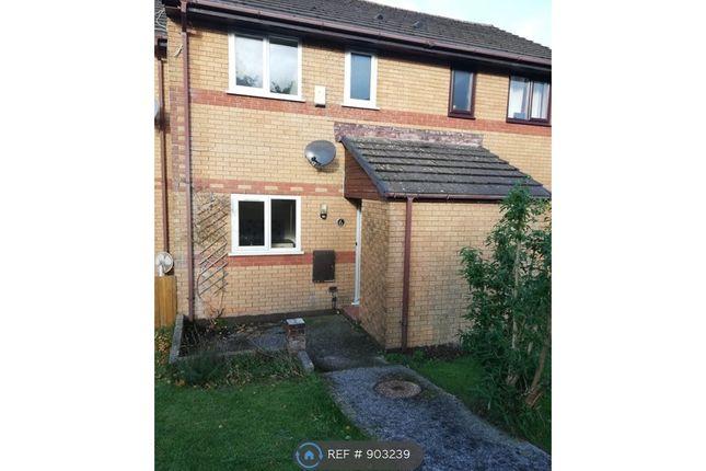 Thumbnail Terraced house to rent in Higher Bridge Park, Wadebridge