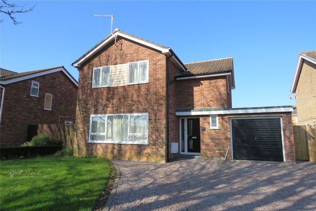 4 bed detached house to rent in Dukes Drive, Ramsey Forty Foot, Ramsey, Huntingdon PE26