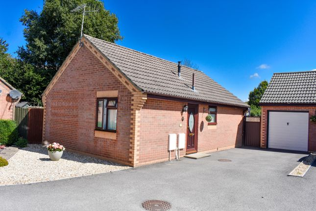 2 bed detached bungalow to rent in Dashwood Close, Sturminster Newton DT10