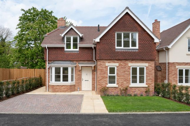 Thumbnail Detached house for sale in Park Drive, Bramley, Guildford