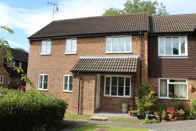 Thumbnail Maisonette to rent in Wessex Close, Hungerford