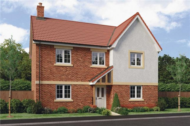 "Thumbnail Detached house for sale in ""Pentrich"" at Barnards Way, Kibworth Harcourt, Leicester"
