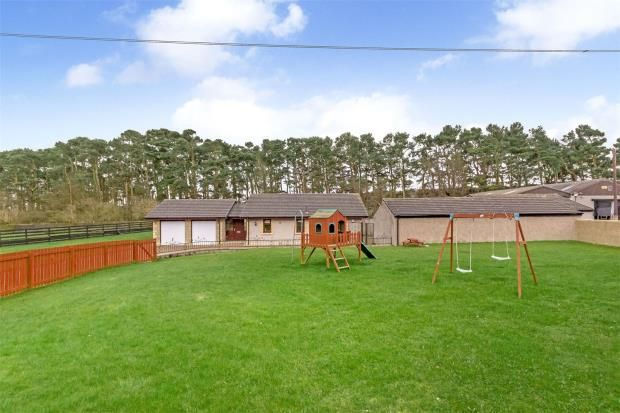 Picture No. 03 of Bowhouse Stables, Maddiston, Falkirk FK2
