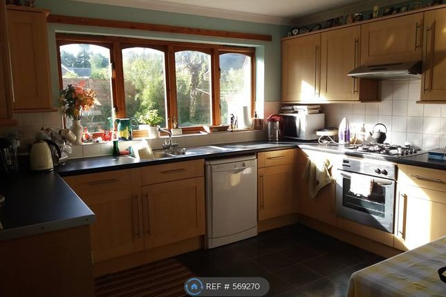 Thumbnail Detached house to rent in Nellfield Road, Crieff