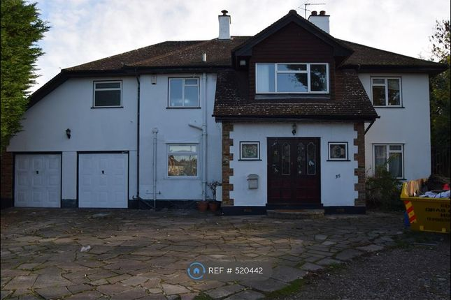 Thumbnail Detached house to rent in Bucks Avenue, Watford