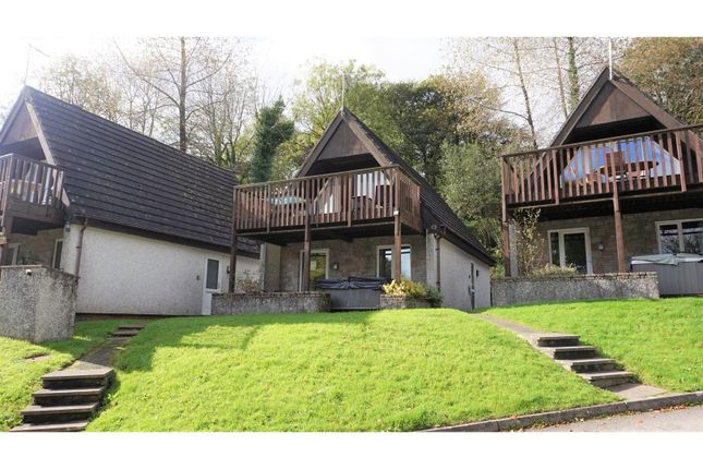 Thumbnail Lodge for sale in Honicombe Holiday Park, Callington