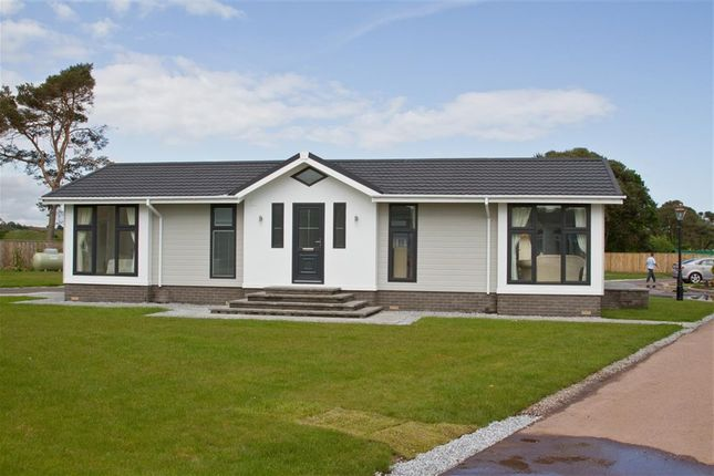 Thumbnail Mobile/park home for sale in Clacton Road, Weeley, Clacton-On-Sea