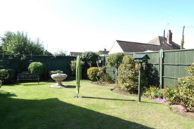 Garden of Snettisham, King's Lynn, Norfolk PE31