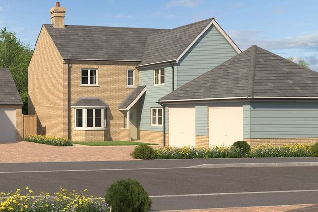 Thumbnail Detached house for sale in Boxworth End, Swavesey, Cambridgeshire