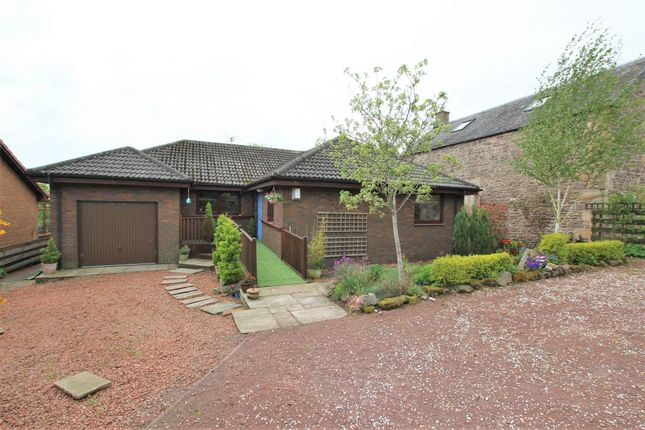 Thumbnail Detached bungalow for sale in Eastyard, Welldale Lane, Nemphlar