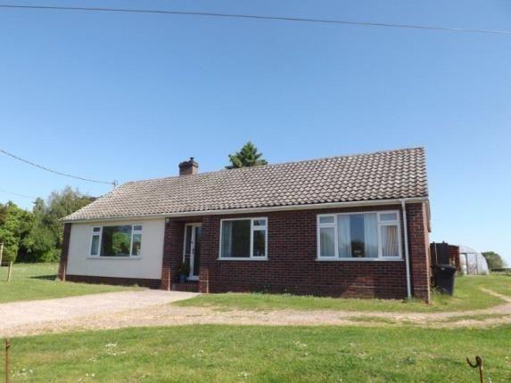 Thumbnail Bungalow for sale in Wreningham, Norwich, Norfolk