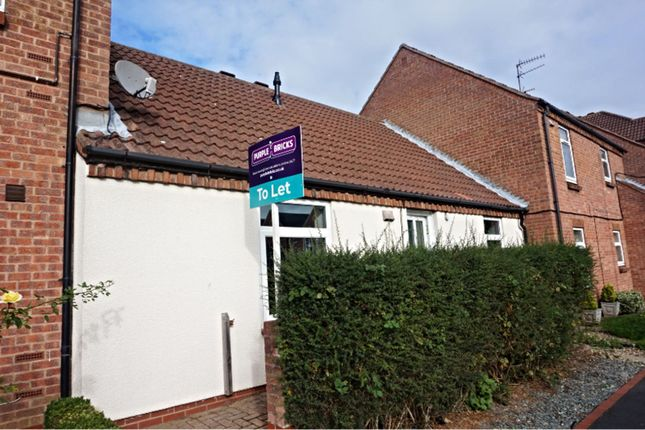 Thumbnail Bungalow to rent in Wellington Road, Beverley