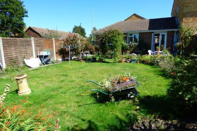 Garden of Canford Heath, Poole, Dorset BH17