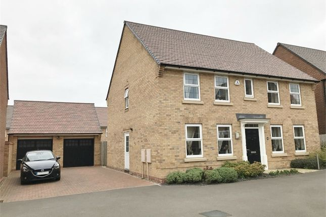 Thumbnail Detached house for sale in Arnold Drive, Corby, Northamptonshire