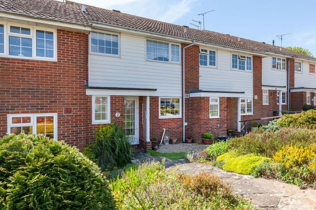 Thumbnail Semi-detached house to rent in Jarvis Brook Close, Bexhill-On-Sea