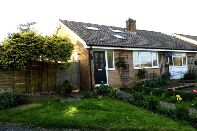 Thumbnail Bungalow to rent in Nevill Road, Uckfield