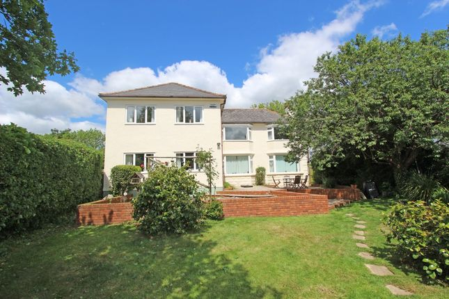Thumbnail Detached house for sale in Willand Old Village, Willand