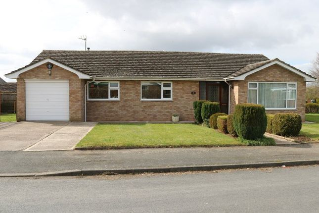 Thumbnail Bungalow to rent in Traherne Close, Lugwardine, Herefordshire