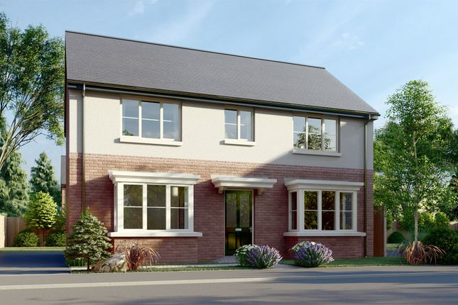 Thumbnail Property for sale in Pottery Gardens, Denby, Ripley