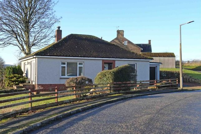 Thumbnail Detached bungalow for sale in Parkhead Loaning, Dumfries
