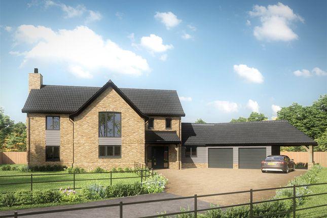 Thumbnail Detached house for sale in Pound Green Lane, Shipdham, Thetford