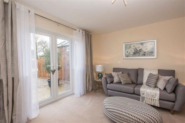 Thumbnail Terraced house for sale in Exning Road, Newmarket