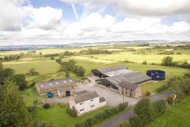 Thumbnail Property for sale in Thorny Knowe, Penton, Carlisle, Cumbria