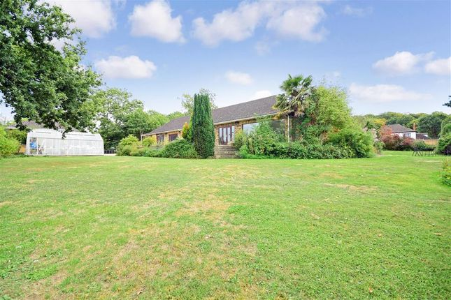 Thumbnail Detached bungalow for sale in Mott Street, Loughton, Essex