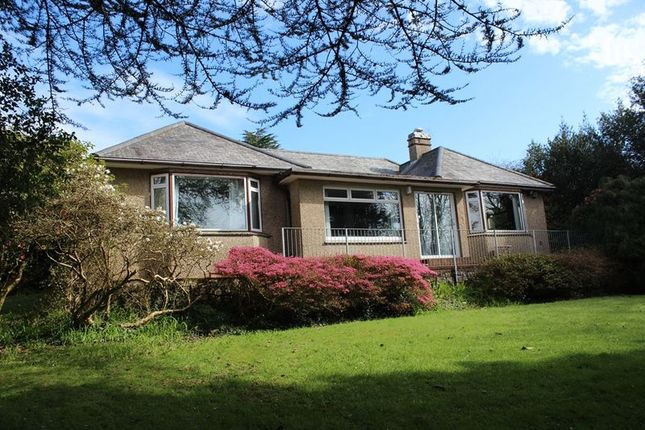 Thumbnail Bungalow for sale in Higher Tremena, St. Austell