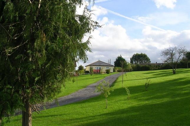 Thumbnail Lodge to rent in Outwood, West Lyng, Taunton