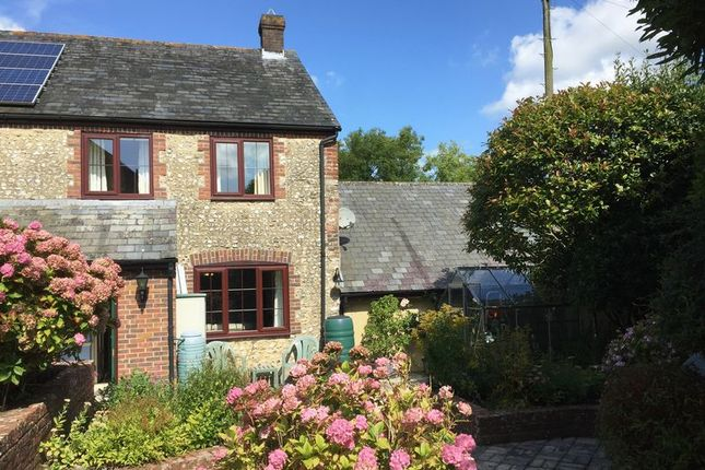 Thumbnail Terraced house to rent in The Maltings, Cerne Abbas, Dorset