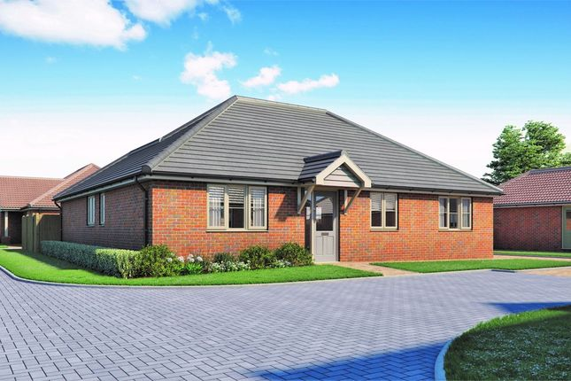 Thumbnail Detached bungalow for sale in Wivenhoe Road, Alresford, Colchester