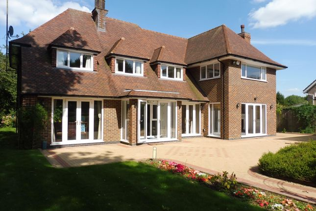 Thumbnail Property to rent in Woodland Rise, Studham, Dunstable