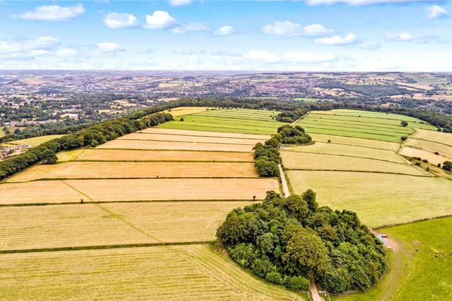 Thumbnail Land for sale in Land & Woodland At Field Lane, Farnley Tyas, Huddersfield, West Yorkshire