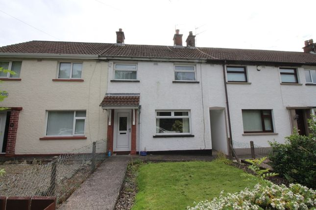 Thumbnail Terraced house to rent in Newpark, Magheramorne, Larne